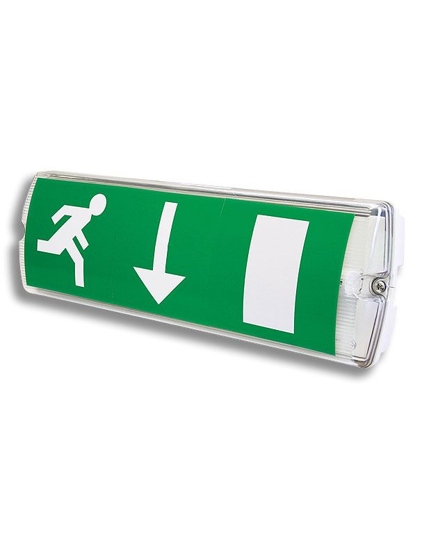 Maintained Emergency Exit Light